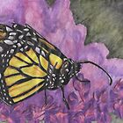 Yellow Butterfly on Purple Flowers by Kyleacharisse