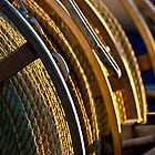 Golden Ropes by ImagesbyDi