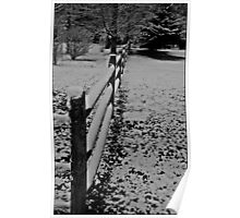 Snow on the Fence Poster
