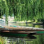 Cambridge Punts by Robert Ellis