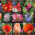 Glories of Spring Floral Collage in Mirrored Frame by BlueMoonRose