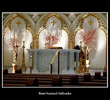 St. Joseph's Cathedral - main altar by Rose Santuci-Sofranko