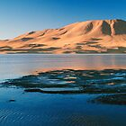 Laguna Colorada by arteparada