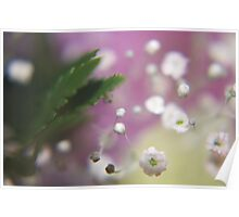 Cloudy Flowers Poster