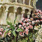 Fiori di Primavera by shutterbug2010