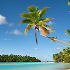 One Foot Island, near Aitutaki, the Cook Islands by Bev Short