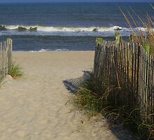 Gateway to the Beach by Paulette1021