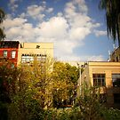 Sky Above a Garden in Alphabet City East Village by Vivienne Gucwa