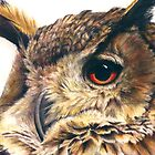 Portrait of an eagle owl by Sarah Trett