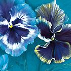 Pansy study by Sarah Trett