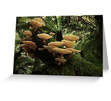 Forest Fungai Greeting Card