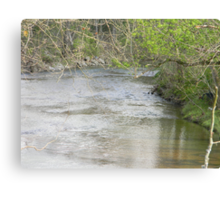 The creek which will be played out in parts Canvas Print
