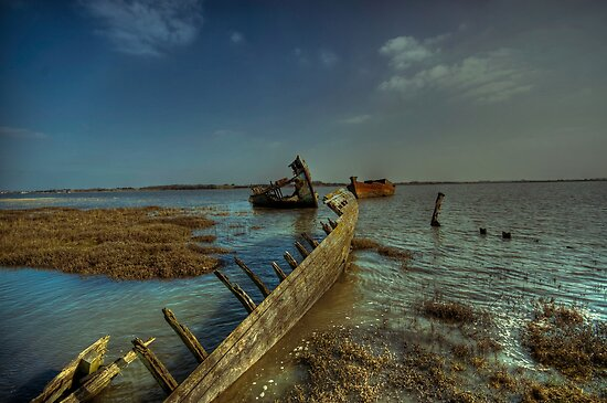 Back In The Water by John Hare