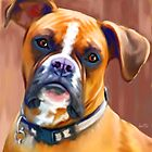 Boxer Art Prints from Painting by Iain McDonald