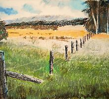 fence and fields by adam pearson
