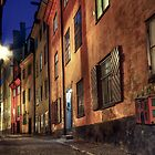 Cobblestone street at night. by cloud7