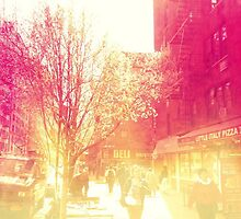 NYU Campus by ShellyKay