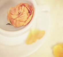 A cup of sweetness by Isabelle Lafrance