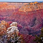 Grand Canyon - Hance Canyon  by Kellypix