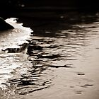 Abstract Ice on the Rappahannock River - 5  by Stephen Graham