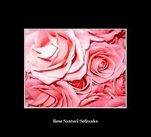 Pink Roses by Rose Santuci-Sofranko