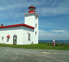 Caribou Island Lighthouse by Jann Ashworth