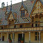 Distinctive Roof, Burgundy, France by TeaCee