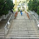people walking up steps in beautiful exotic park by Joseph Green