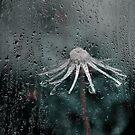 rain on me- r by Aimelle