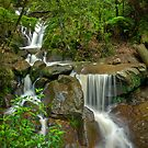 Autumn Rain at Olinda Falls by Jason Green