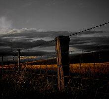 Golden Line by Penny Kittel
