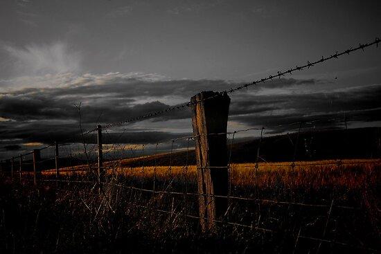 Golden Line by kurrawinya