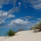 White Sands by Loree McComb