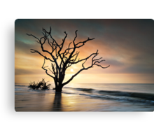 Boneyard Sunrise - Botany Bay, Edisto Island SC Canvas Print