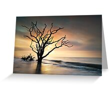 Boneyard Sunrise - Botany Bay, Edisto Island SC Greeting Card