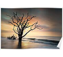 Boneyard Sunrise - Botany Bay, Edisto Island SC Poster
