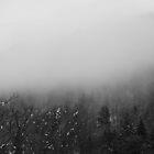 Monochrome Mist by outlawboy2