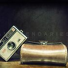 old camera - 2011 - Original Signed Numbered by Yann Pendaries