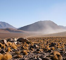 Dust Rising in the Desert by 650soul