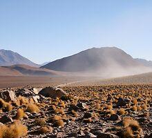 Dust Rising in the Desert by 650soul