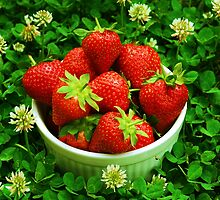 Strawberries and Clover by Mattie Bryant