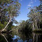Esk River by Norman Winkworth