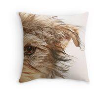Dooley Throw Pillow