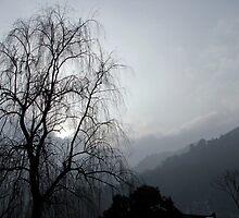 Emei Shan, Sichuan, China by DaveLambert