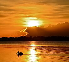 Golden Morning.  15-4-11. by Warren  Patten