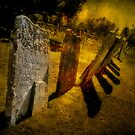 Gravestones &amp; Shadows by Shirley Shelton