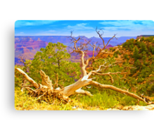 Even the Great Are Scarred Canvas Print