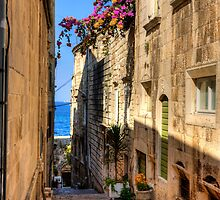 Bougainvillea in a Korčula Lane by Tom Gomez