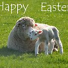 a small step for a lamb: Easter card by Steve