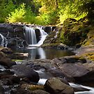 Falls on Sweet Creek by Randall Ingalls